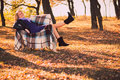Free Pregnant Woman In Autumn Park Stock Photos - 28711943