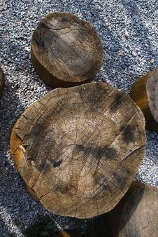 Free Tree Stool And Gravel Stock Photo - 28714210