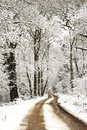 Free Winter Tracks On A Snowy Winters Day Stock Photos - 28720863