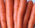 Free Raw Carrots Stock Photos - 28725853