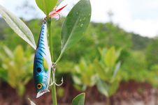 Fishing Lures. Royalty Free Stock Photo
