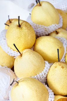 Free Chinese Pear Stock Photos - 28728233