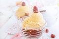 Free Delicious Vanilla Ice Cream With Raspberries Stock Photos - 28731313