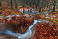 Free Beautiful Autumn Foliage And Mountain Stream In The Forest Royalty Free Stock Photos - 28732338
