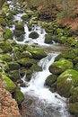 Free Waterfalls2 Royalty Free Stock Images - 28733319