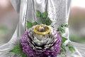 Free Isolate On White Holiday And Wedding Background Royalty Free Stock Photo - 28734745