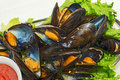 Free Steamed Mussels Royalty Free Stock Image - 28736156
