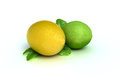 Free Concept Fruit Of A Lemon And Lime Royalty Free Stock Image - 28737316