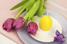 Free Easter Composition With Flowers Stock Images - 28734694