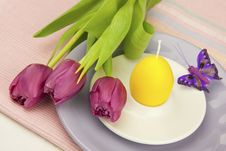 Easter Composition With Plate For Eggs Royalty Free Stock Image