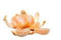 Free Tangerine Royalty Free Stock Photography - 28742627