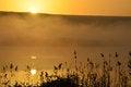 Free Beautiful Sunrise And Reflection In Hagamon Lake Royalty Free Stock Images - 28753759