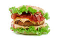 Free Hamburger With Bacon Royalty Free Stock Photography - 28757917