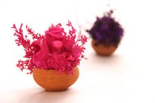 Free Pink Dry Flower Bouquet Royalty Free Stock Photo - 28758125