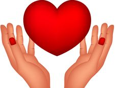 Free Red Heart And Hands Stock Photography - 28770012