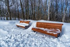 Free Park Benches In Snow Stock Photography - 28797002