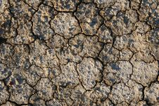 Dried Cracked Earth Stock Image