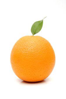 Free Orange Royalty Free Stock Images - 2886439