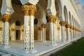 Free Sheikh Zayed Al Nayhan Mosque Royalty Free Stock Photos - 28800548