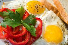 Free Scrambled Eggs Royalty Free Stock Photos - 28802718