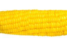 Free Corn Stock Photo - 28805310