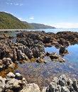 Free Kaikoura Rock Pool Vertical Panorama, New Zealand Stock Image - 28815991