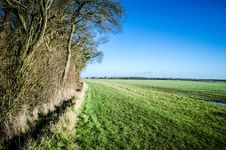 Free English Field Bordering On Woodland Royalty Free Stock Images - 28810449