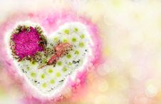 Free Heart Of Flowers As A Valentine S Card Royalty Free Stock Images - 28819789