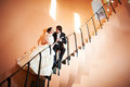 Free Happy Bride And Groom On Ladder Royalty Free Stock Photos - 28820818