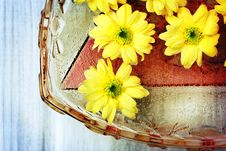 Free Yellow Flower Background Royalty Free Stock Photo - 28824465