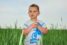 Free A Boy Stands In The Tall Grass. Royalty Free Stock Photography - 28826287