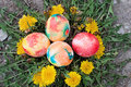 Free Easter Hunt Stock Photo - 28839500