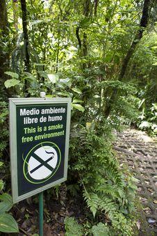 Free Smoke Free Environment Sign In The Forest Royalty Free Stock Images - 28836299