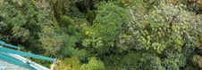 Free Rain Forest From Above. Monteverde Stock Photo - 28836590