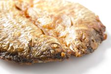 Free Closeup Dried Fish Fried On White. Royalty Free Stock Photos - 28854718