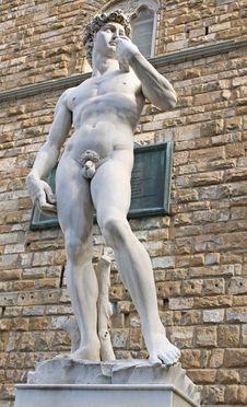 Free Piazza Della Signoria Stock Photos - 28858043