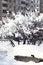 Free City Under Snow. Stock Photography - 28852562