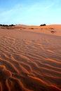 Free Red Sand Dunes. Sunset Stock Photos - 28865173