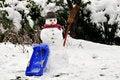Free The Snowman Stock Photo - 28869790