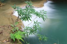 Free Tree And Waterfall - Thailand Stock Photography - 28865802