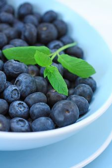 Free Ripe Blueberries In The Blue Bowl Stock Photography - 28866002