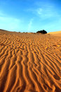 Free Red Sand Dunes. Sunset Stock Image - 28870711