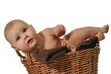 Free Newborn Baby Crawling Out Of The Basket Royalty Free Stock Images - 28879949
