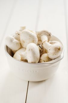 Free Common Mushrooms Royalty Free Stock Image - 28890956