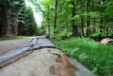 Free Log Of Wood Stock Image - 28896171