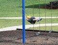 Free Kid On Swing Stock Photography - 2895042