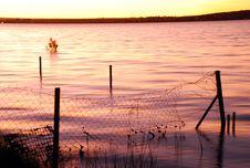 Free Lake Sunset, Submerged Fence Royalty Free Stock Images - 2891429