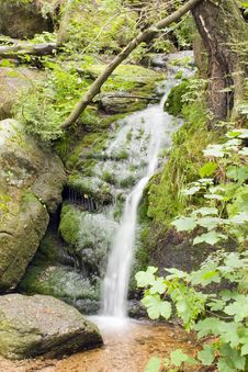Stream In The Green Royalty Free Stock Photography