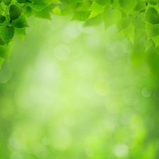 Abstract Environmental Backgrounds Royalty Free Stock Images