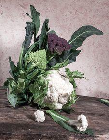 Cauliflower Cabbage Stock Images